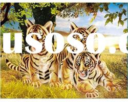 Beatiful tiger 3d animal pictures