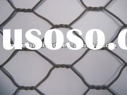 Hexagonal Wire Mesh /galvanized wire mesh/metal mesh (factory)