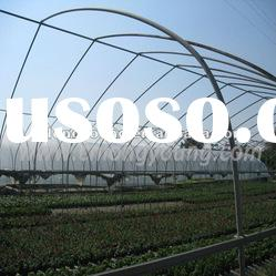Single-span Plastic Greenhouses for Sale