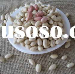 2011 crop best quality blanched peanut kernel