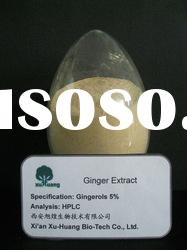 Plant extract Ginger extract powder 5% for food additive