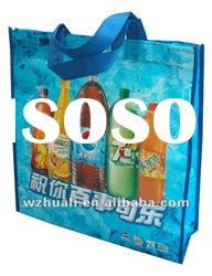 Recycle Promotion Bottle Non Woven Bag