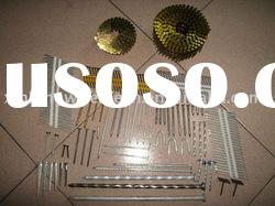 common nails/roofing nails/coil nails/concrete nails