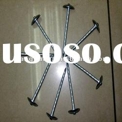 Galvanized Umbrella Head Roofing Nails-ISO9001:2008