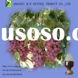 top quality grape seed extract powder