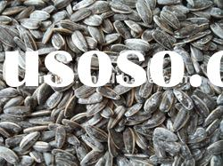 Chinese sunflower seeds with good quality and good price
