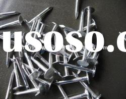 polished and galvanized common wire nail