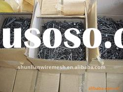 galvanized common wire nail factory supply