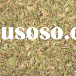 new cropped dried fennel Seeds whole green,machine cleaned