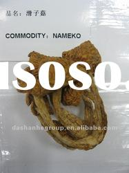 Dried pholiota Nameko mushroom with best quality and natural food