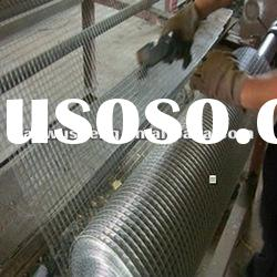 Electro/hot dipped galvanized welded wire mesh(Manufacturer)
