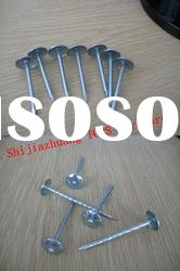 Twisted Shank Galvanized Umbrella Roofing Nail