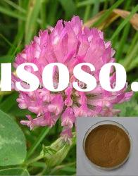 Best quality used for lowering cholesterol Red Clover Extract powder with ISO9001 Certificate