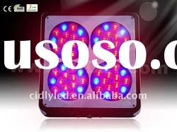 Apollo Red Blue Orange Plant Lamp LED Grow Light 10:3:2 200W EU Version