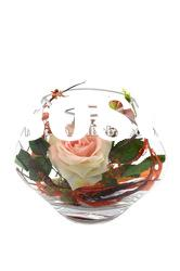 clear flower vases glass shape with flower of decoration for home