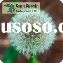 dandelion root extract powder supplier