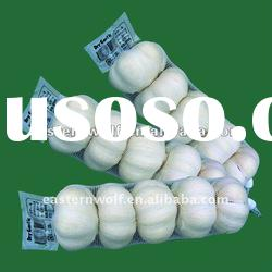 high grade chinese cold store garlic with good price