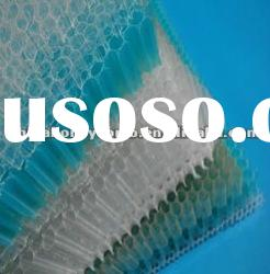 polypropylene honeycomb core board plastic panel made in china