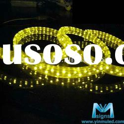 24V 220V remote control led led rope light