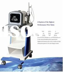 Full Digital Portable Ultrasound Diagnostic System(CE approval)