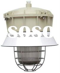 Explosion Proof Induction Lamp Explosion Proof Induction