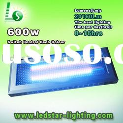 600W plant accelerator LED grow lights with united high power led