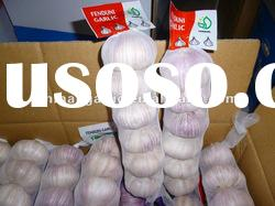 China Fresh Normal White Garlic ( Red Garlic , Purple Garlic )