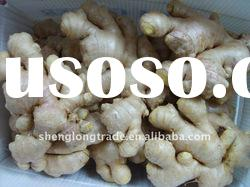 2011 New fresh chinese yellow ginger high quality &low price