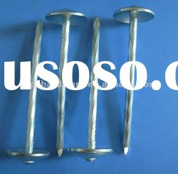 Umbrella Head Galvanized Roofing Steel Nails