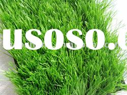 Durable Premium Soccer/football Artificial Grass Synthetic turf