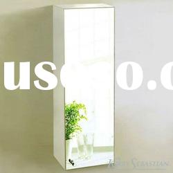 Evia Stainless Steel Mirror Cabinet