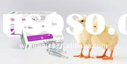 Veterinary Medicine with Ofloxacin Solution with Poultry Medicine