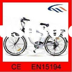 electric bicycle with lithium battery 180W-250W Brushless Motor Shimano Nexus 6 / 7 speed