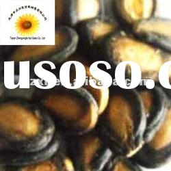 2011 crop best dry black watermelon seeds(11cm up) in shell