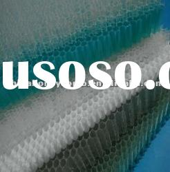 innocuous harmless polypropylene honeycomb core plastic panel(building material) made in china