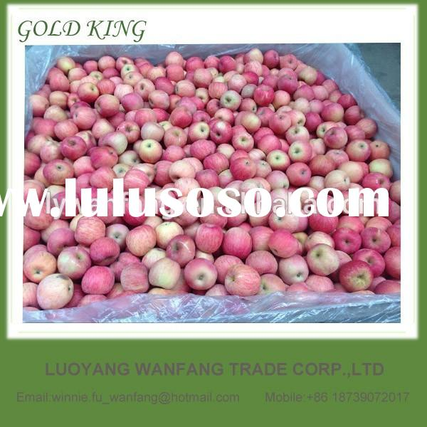 Fuji apple scientific name of fruits fresh red hot selling