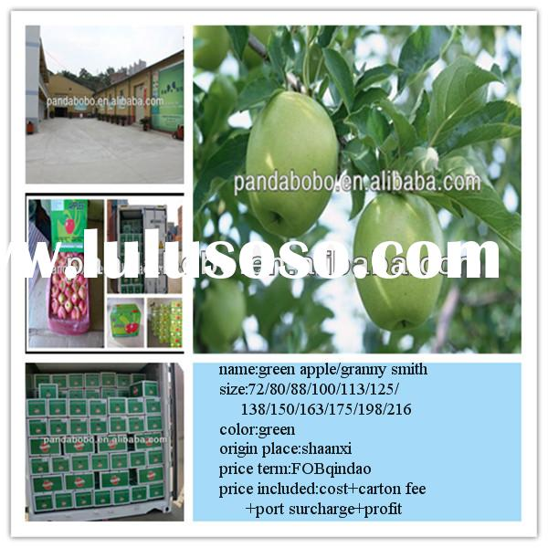 Scientific name of fruits called fresh green apple and granny smith in wholesale price