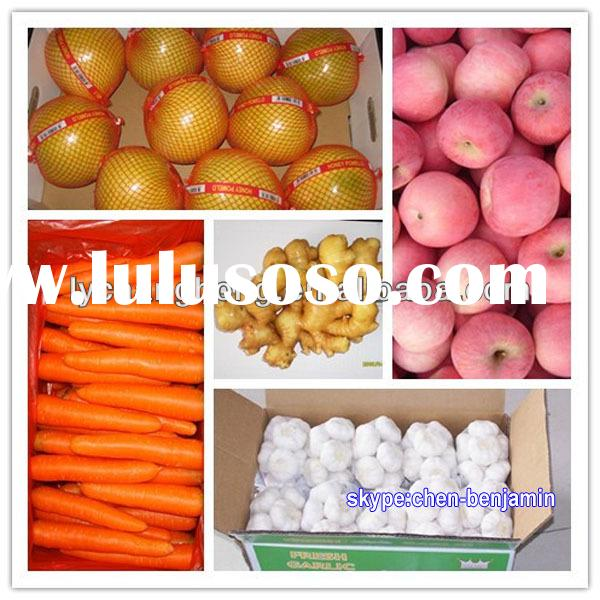 fruits vegetables in China/scientific name of all fruits