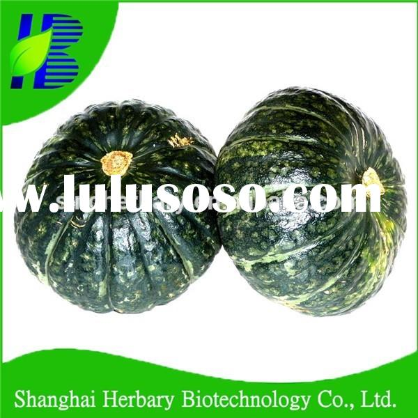 Easy growing F1 hybrid green pumpkin seeds for cultivation