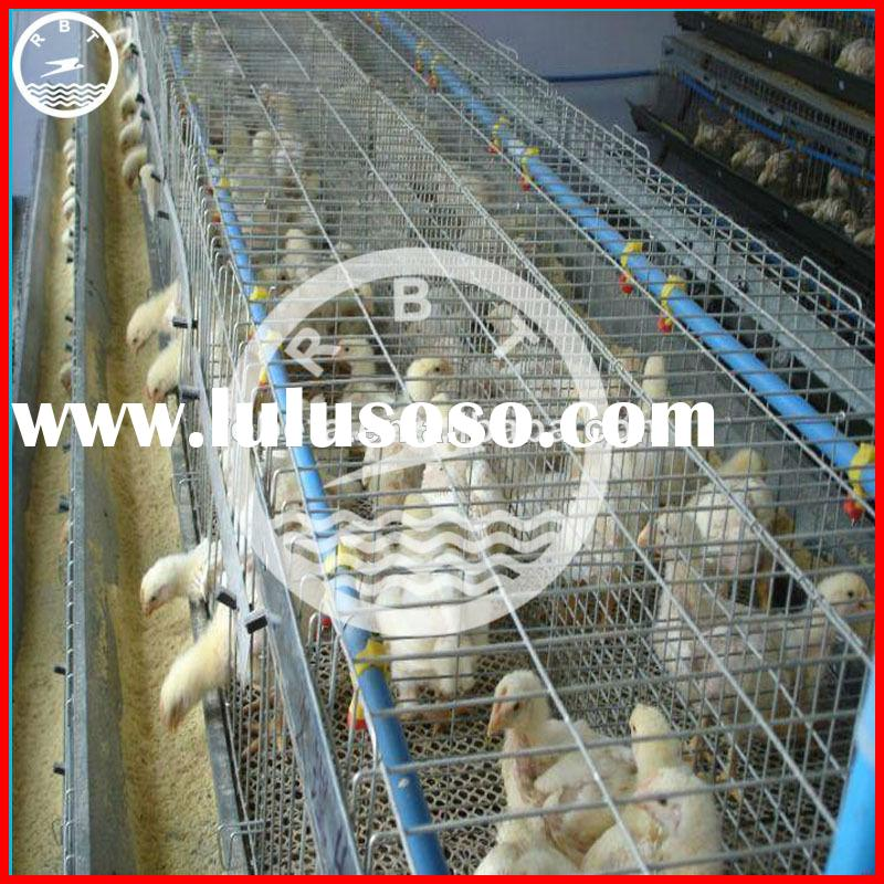 China Best sale poultry portable bird cage welded wire mesh roll