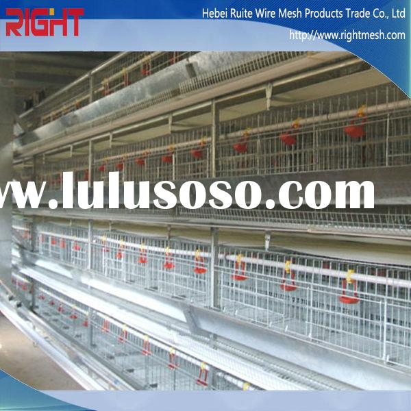 Portable Detachability Chicken Layer Cage Price, Broiler Poultry Farm House Design for Sale