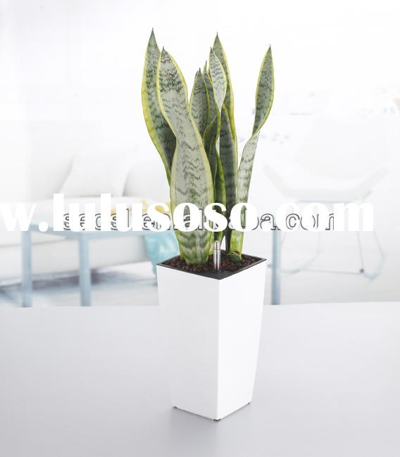 wholesale tall clear plastic flower vases